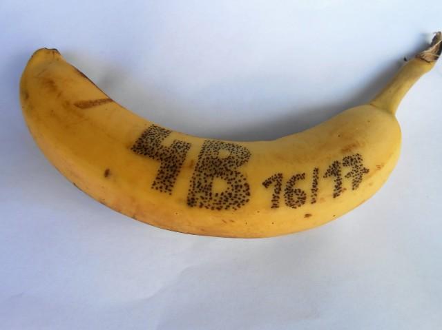 1-dscn1231